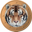 Tigercoin (TGC) Difficulty Chart